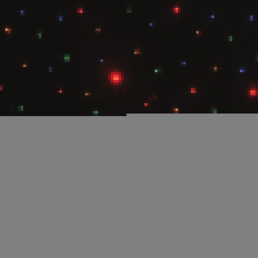 Mixing Color RGB LED Star Curtain